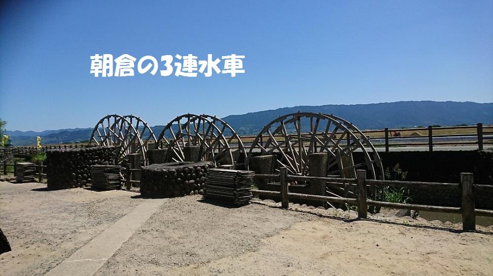 DSC_1861